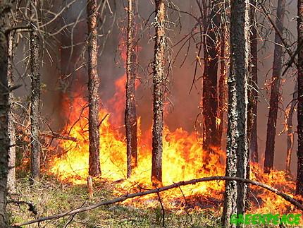 Armádě se podařilo uhasit požáry v okolí jaderného centra u města Sarov