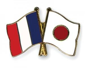 jaderná energie - Japonsko požádalo Francii o pomoc při likvidaci havárie na JE Fukušima - JE Fukušima (Flag Pins France Japan) 1