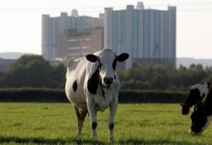 jaderná energie - Nejstarší evropskou jadernou elektárnu čeká uzavření - Back-end (obr) 1