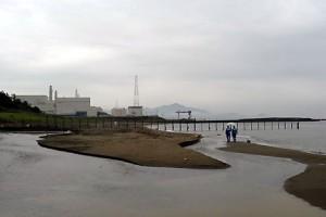 jaderná energie - V Japonsku funguje jediný jaderný reaktor - JE Fukušima (Kashiwaza) 1