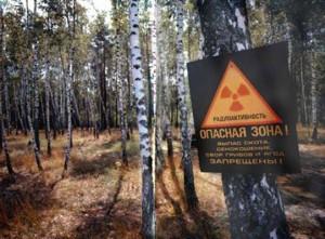 Varovná cedule u vstupu do černobylské zóny: Pasení skotu, kosení trávy na seno a sběr hub a jiných plodin PŘÍSNĚ ZAKÁZÁNY. Zdroj: Chornobyl.net