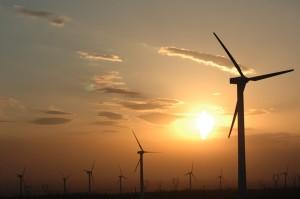 jaderná energie -  Čína dá na úspory energie a obnovitelné zdroje 170 mld jüanů  - Životní prostředí (Wind power plants in Xinjiang China1) 1