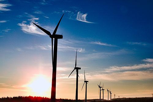 Bulharská vláda prudce snížila výkupní ceny elektřiny z obnovitelných zdrojů