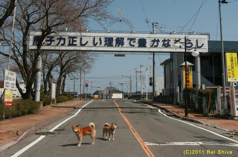 Japonská vláda chce vrátit život do míst kolem Fukušimy, bude podporovat místní průmysl a zaměstnanost