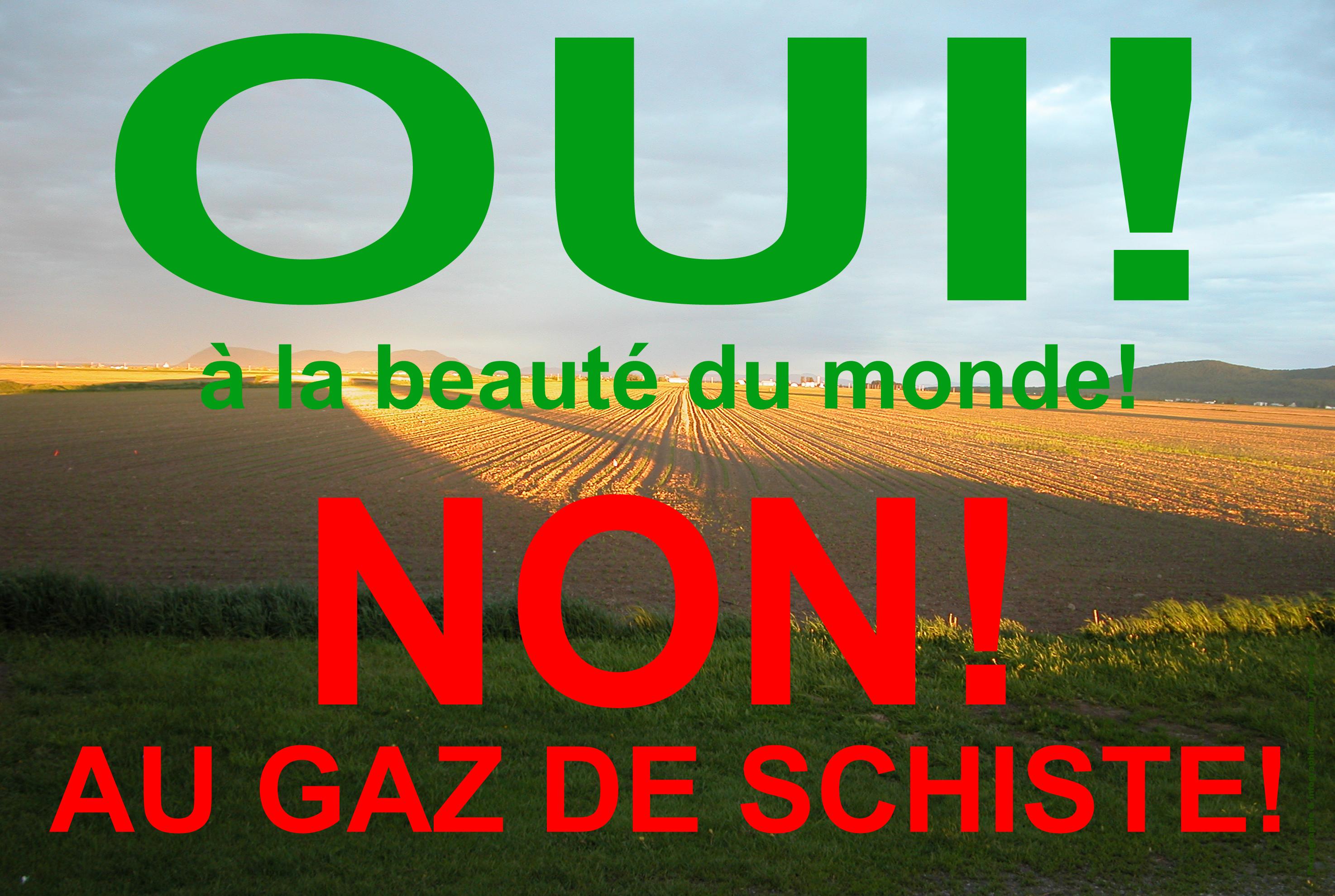 Francouzi nebudou těžit břidlicový plyn a uzavřou JE Fessenheim