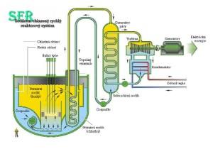 Obr. 2: zjednodušené schéma sodíkem chlazeného reaktoru.