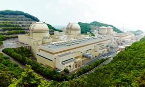 Pohled na jadernou elektrárnu Ohi, v popředí stojí třetí a čtvrtý blok, což jsou jediné dva bloky, které po fukušimské havárii zůstaly v provozu. (Zdroj: Guardian.co.uk)