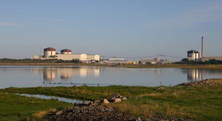 Pohled na čtyři ringhalské jaderné reaktory. Napravo se za tlakovodním reaktorem od společnosti Westinghouse (výkon 866 MWe) schovává varný reaktor od švédské společnosti ASEA-Atom o výkonu 857 MWe. Nalevo potom stojí tlakovodní dvojčata od společnosti Westinghouse, zatímco čtvrtý reaktor má výkon 935 MWe, třetímu reaktoru byl zvýšen výkon modernizací na 1045 MWe. (Zdroj: Vattenfall.se)