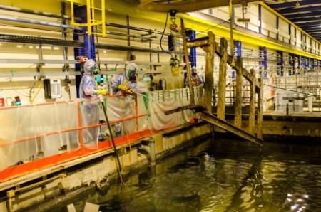 Vyjímání již nepoužívaných zařízení z nádrže. (Zdroj: World Nuclear News)