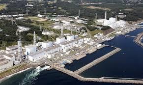 Japonský laureát Nobelovy ceny je proti obnovení japonské jaderné energetiky