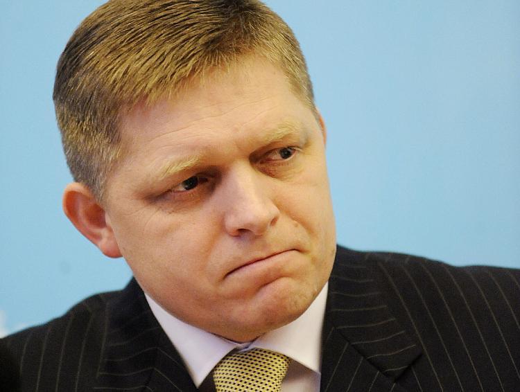 Ficova slova snížila šance podání nabídky společností ČEZ na koupi SE