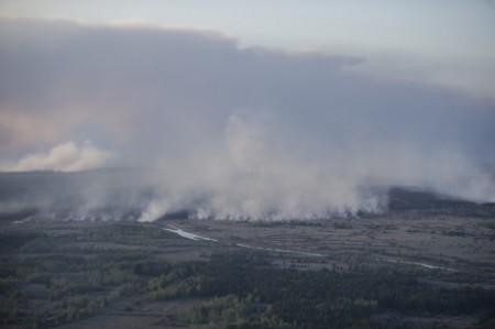 Chernobyl forest fires - April 2015 - 460