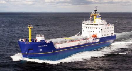 Pacific-Grebe-at-sea2-554x300