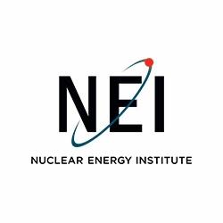 NEI: Jádro je pro americkou energetiku strategicky nenahraditelné