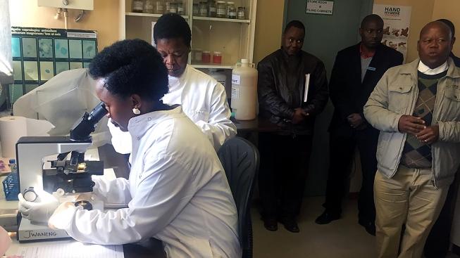 VBotswaně vyrostla první odloučená veterinární laboratoř. Kdiagnóze nemocí bude využívat i jaderné technologie