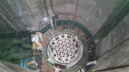 Tianwan 3 reactor internals - 460 (CNNC)