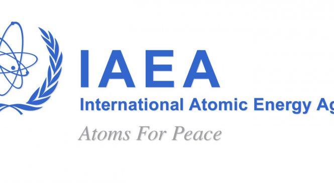 Agentura MAAE očekává do roku 2030 nárůst instalovaného výkonu jaderné energetiky
