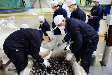 jaderná energie - Na čínském demonstračním bloku s reaktorem HTR-PM začalo zakládání paliva - Nové bloky ve světě (HTR graphite balls 460 CNI23) 1