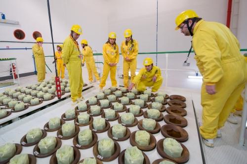 jaderná energie - Technický týdeník: Jaderný oslíčku, otřes se! - Zprávy (133middle) 1