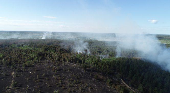 Lesní požár u odstavené jaderné elektrárny Černobyl je uhašen