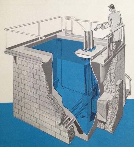jaderná energie - Bazénové reaktory – úvod - Ve světě (ACF Pool Reactor) 7