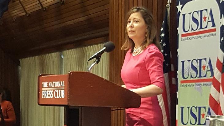 jaderná energie - Vyberte Jádro, sdělila Korsnick americkému energetickému fóru - Zprávy (Maria Korsnick USEA forum Jan 2019 NEI) 1