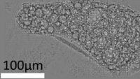 Vědci studují částice z Fukušimy