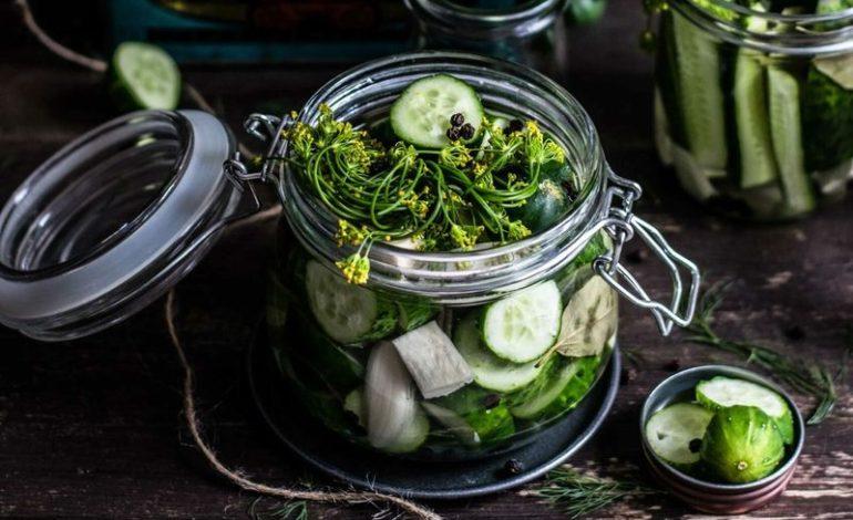 jaderná energie - Have Good Food Taste Then Enjoy Reading - Zprávy (vegetable 1 2) 5